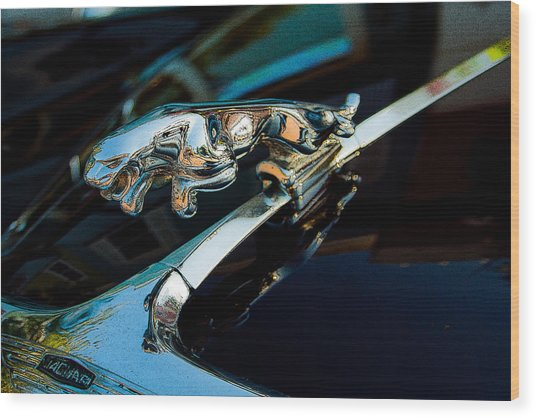 Jaguar Jaguar Wood Print