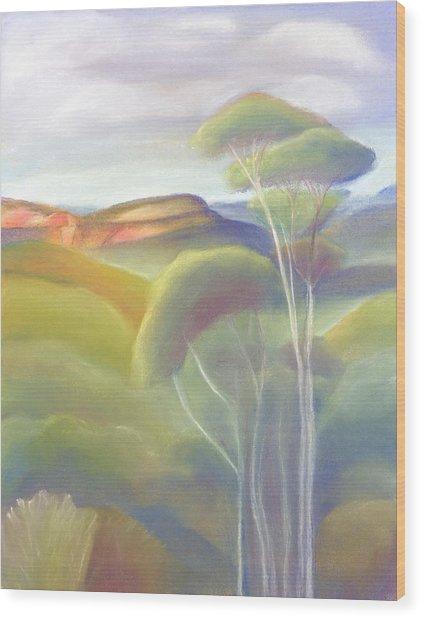 Jamison Valley Blue Mountains National Park Nsw Australia Wood Print