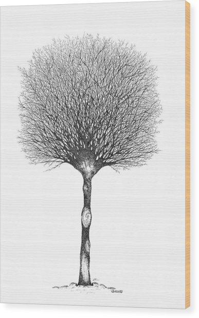 January '12 Wood Print