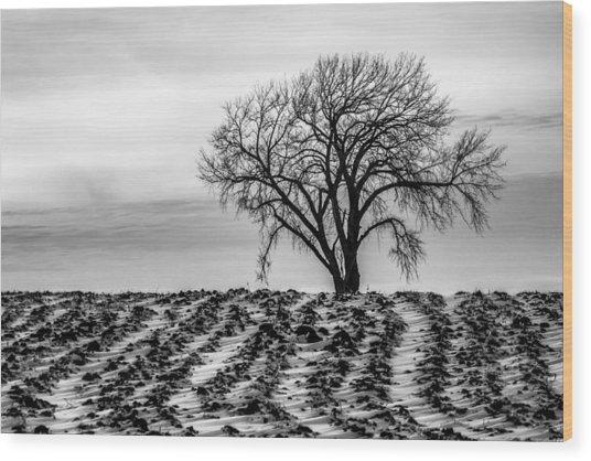 January Wood Print
