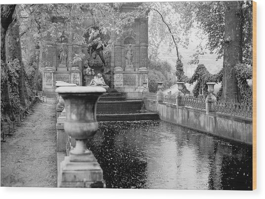 Jardin De Medicis Paris Wood Print
