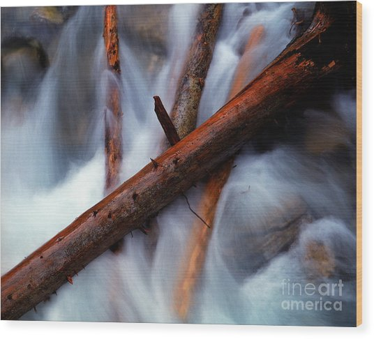 Jasper - Beauty Creek Logs Wood Print by Terry Elniski