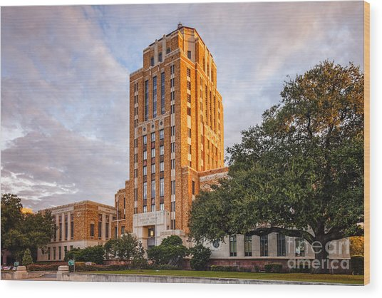Jefferson County Courthouse At Sunrise - Beaumont East Texas Wood Print