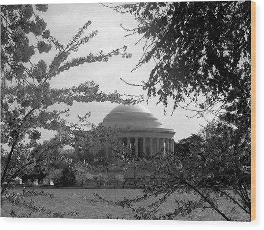 Jefferson Memorial Wood Print by Kimber  Butler