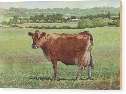 Jersey Cow Wood Print by Anthony Forster