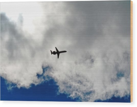 Jet Airplane Wood Print