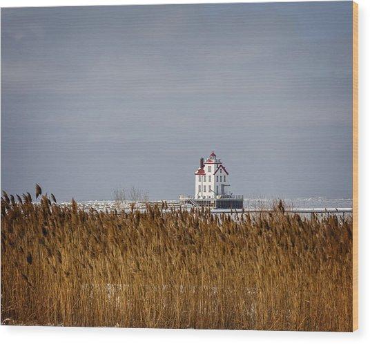 jewel of the Port Lorain Lighthouse Wood Print