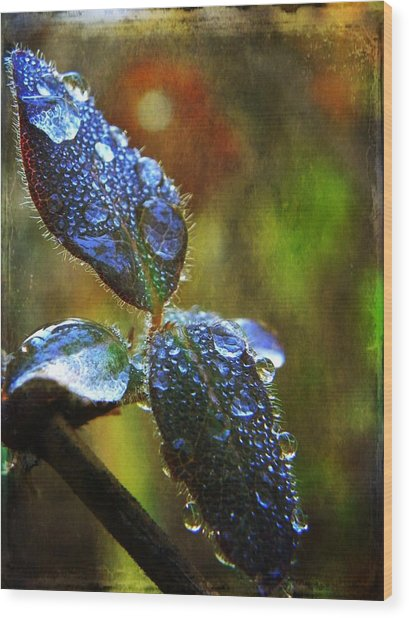 Jeweled Leaves Wood Print