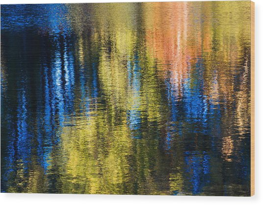 Jeweled Reflection 1 Wood Print