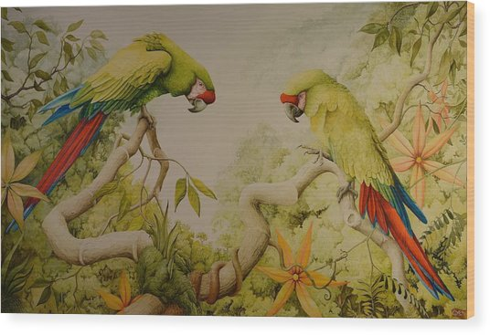 Jewels Of The Rain Forest  Military Macaws Wood Print