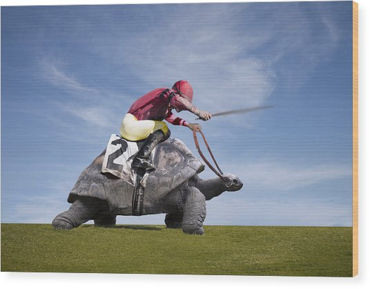 Jockey Over A Turtle Wood Print by Buena Vista Images