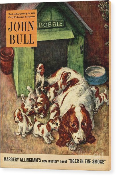 John Bull 1952 1950s Uk Dogs Puppies Wood Print by The Advertising Archives