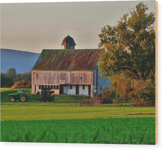 John Deere Green Wood Print