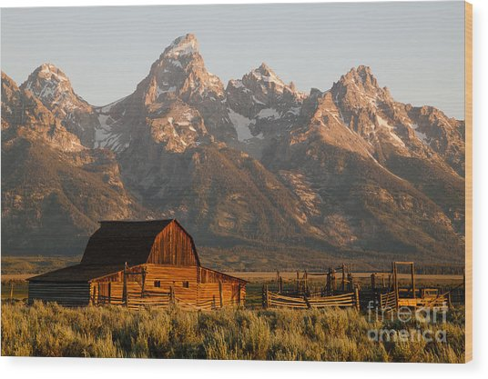 John Moulton Barn Wood Print