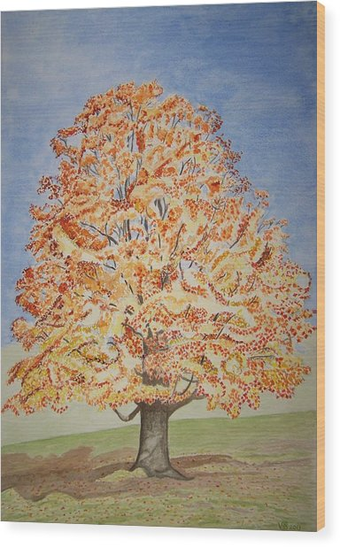 Jolanda's Maple Tree Wood Print