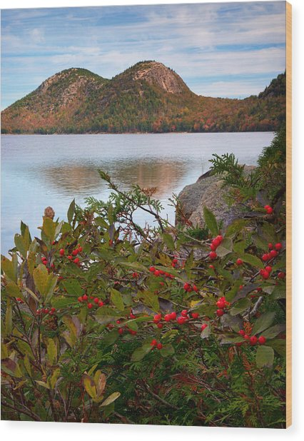 Jordan Pond With Berries Wood Print