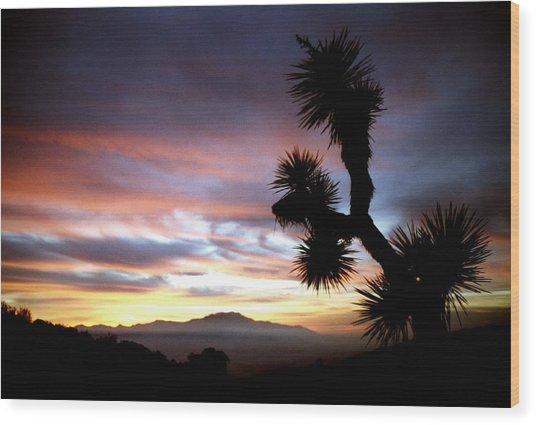 Joshua Tree At Sunset Wood Print