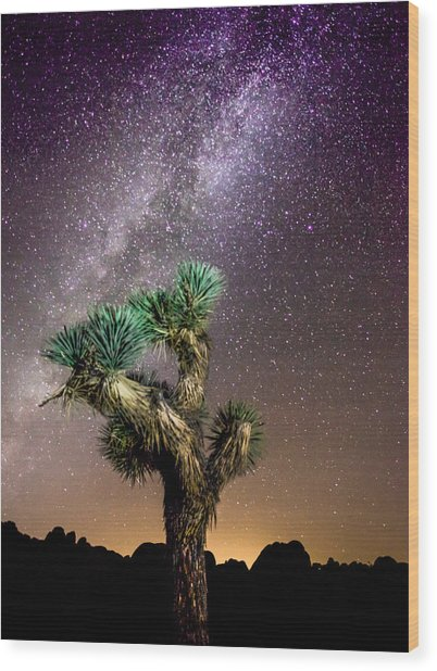 Joshua Tree Vs The Milky Way Wood Print