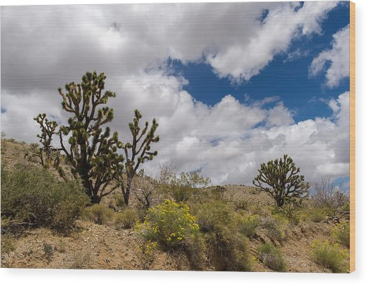 Joshua Trees And Wildflowers Wood Print by Willie Harper