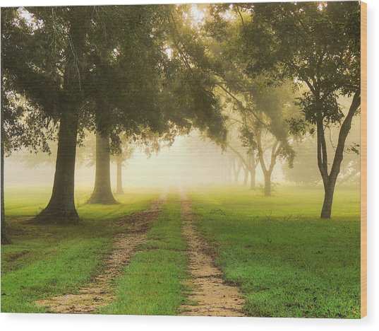 Journey Into Fall Wood Print