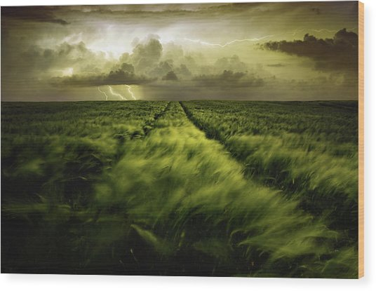 Journey To The Fierce Storm Wood Print