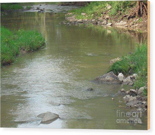 Jubilee Creek Wood Print