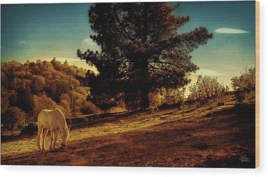 Springtime California Landscape Wood Print
