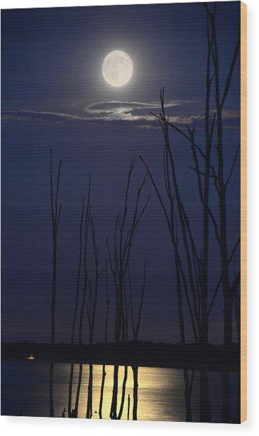 July 2014 Super Moon Wood Print