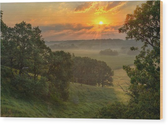 July Morning Along The Ridge Wood Print