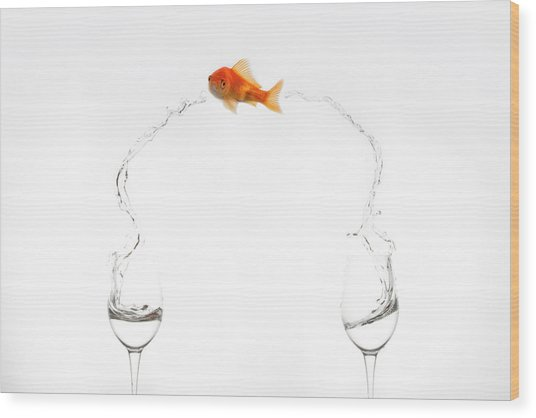 Jump! Wood Print by Jose Beut