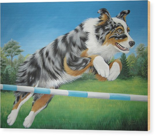 Jumping Aussie Wood Print