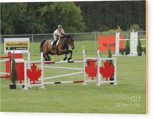 Jumping Canadian Fence Wood Print