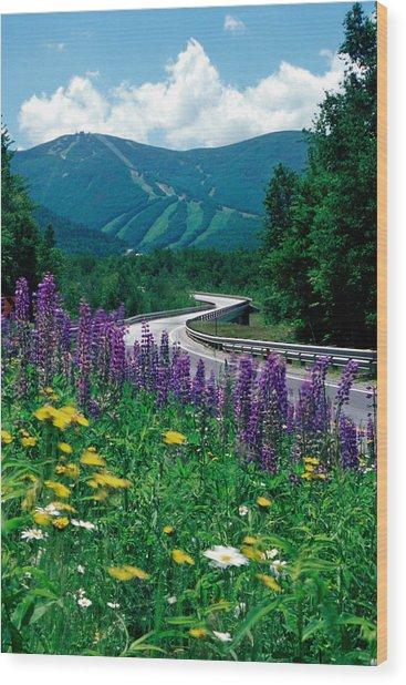 June In Franconia Notch Wood Print