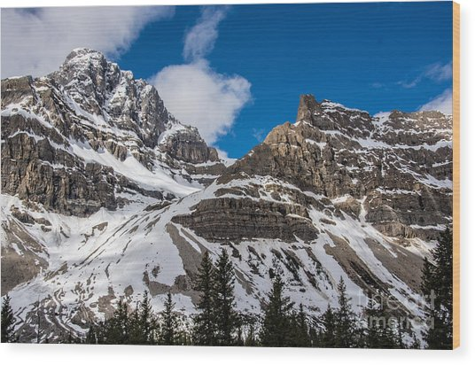 June Sun On Snow-capped Canadian Rockies Wood Print