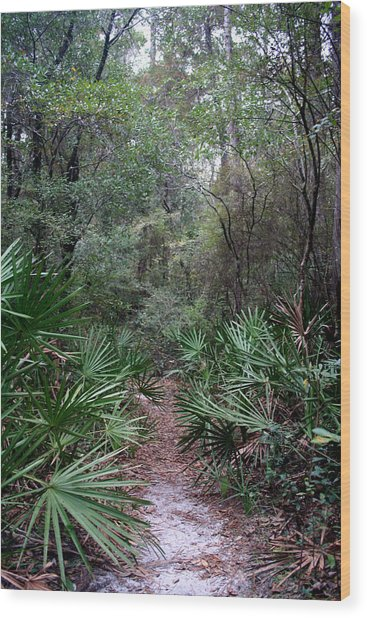 Jungle Trek Wood Print