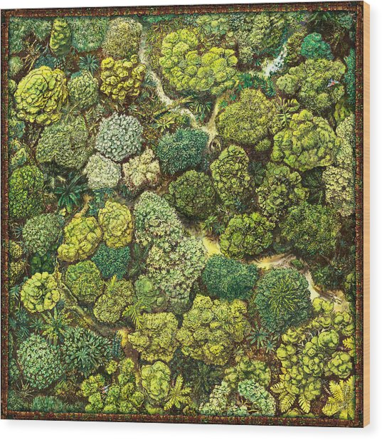 Jungle View Wood Print