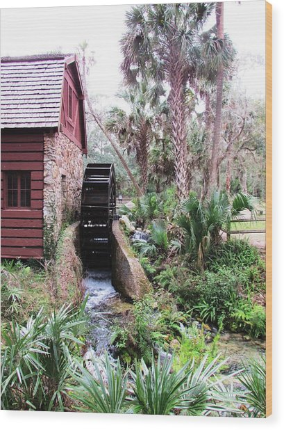 Jungle Water Wood Print by Will Boutin Photos