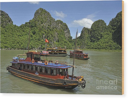 Junk Boats In Halong Bay Wood Print by Sami Sarkis