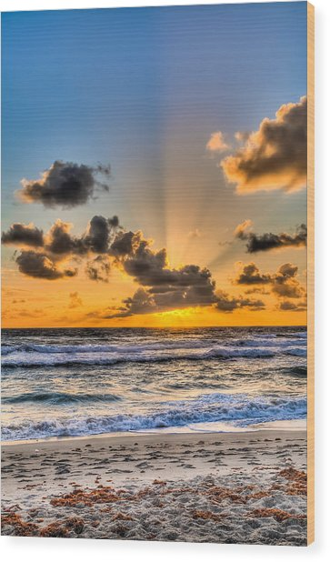 Juno Beach Sunrise Wood Print