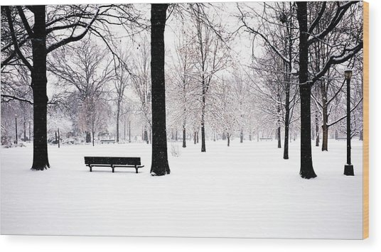 Jupiter Park In Snow Wood Print