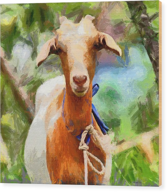 Just A Goat Wood Print