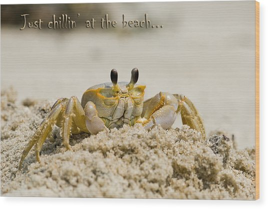 Just Chillin On The Beach Wood Print by Jeff Abrahamson