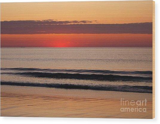 Just Showing Up Along Hampton Beach Wood Print