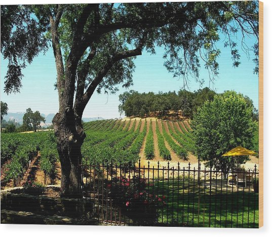 Justin Vineyards Paso Robles California Wine Country Winery Wood Print by Ron Bartels