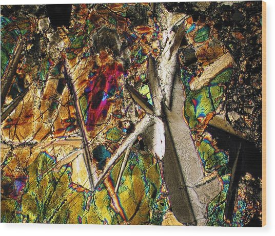 Jungle Dusk Wood Print