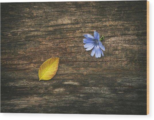 Juxtaposition Wood Print