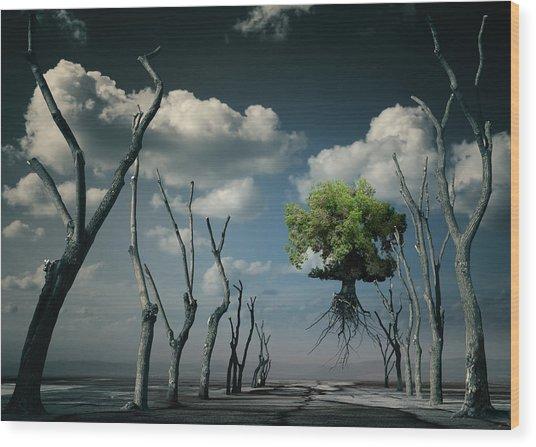 K81 Wood Print by Radoslav Penchev