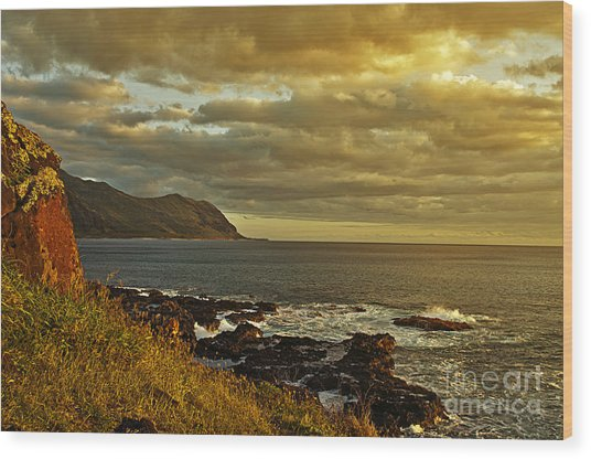 Ka'ena Point Hawaii Wood Print