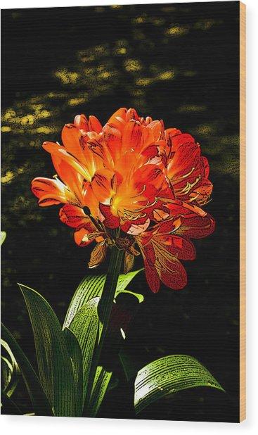 Kafir Lily Wood Print