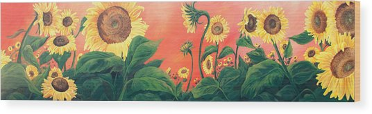 Kait's Sunflowers Wood Print
